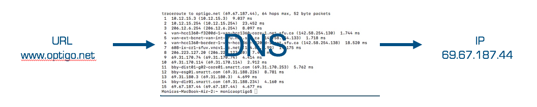 Domain Name System (DNS) returning an IP address for a URL